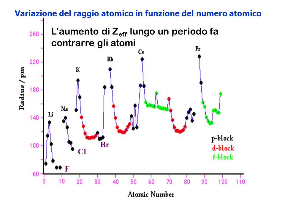 Variazione del raggio atomico in funzione del numero atomico L'aumento di Z eff lungo un periodo fa contrarre gli atomi F Cl Br