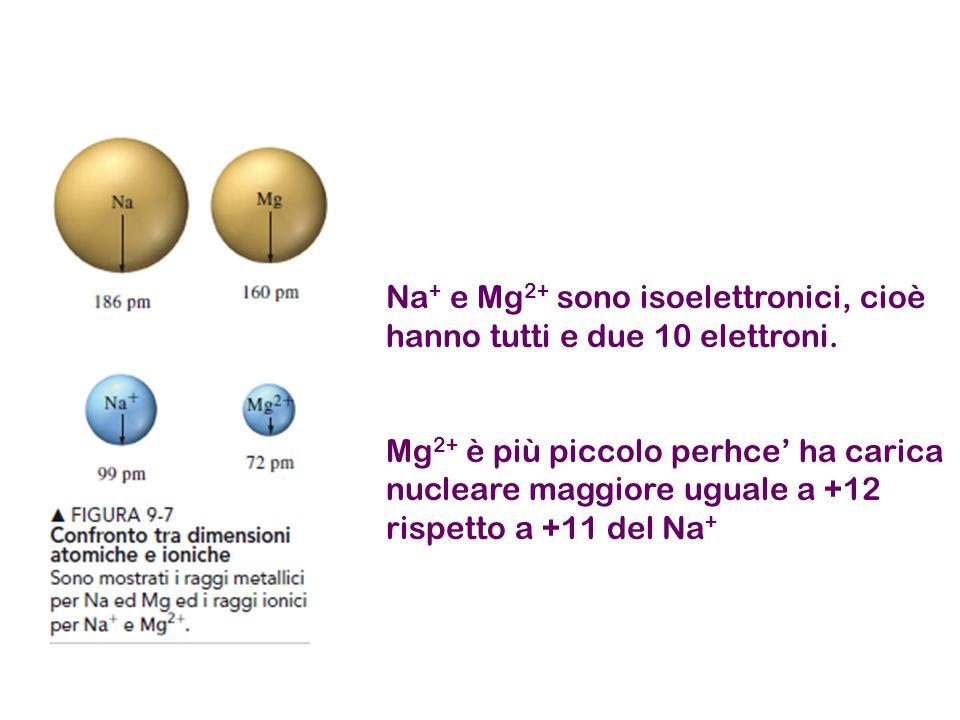 Na + e Mg 2+ sono isoelettronici, cioè hanno tutti e due 10 elettroni. Mg 2+ è più piccolo perhce' ha carica nucleare maggiore uguale a +12 rispetto a