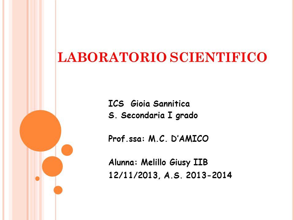 LABORATORIO SCIENTIFICO ICS Gioia Sannitica S.Secondaria I grado Prof.ssa: M.C.