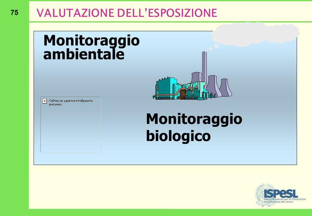 75 VALUTAZIONE DELL'ESPOSIZIONE Monitoraggio ambientale Monitoraggio biologico