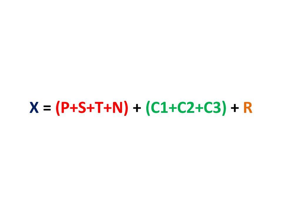 X = (P+S+T+N) + (C1+C2+C3) + R