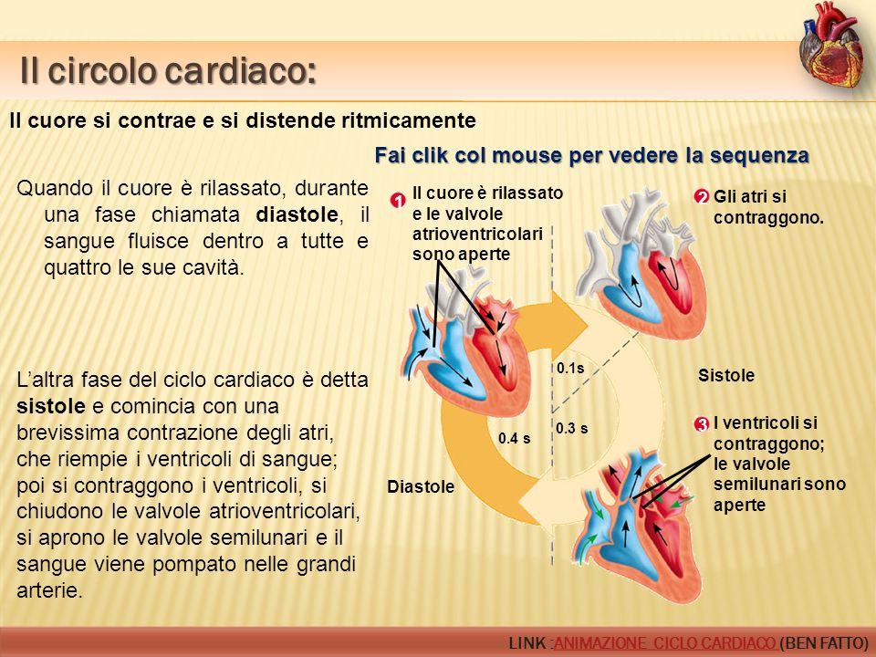 Il circolo cardiaco: Il circolo cardiaco: Il cuore è rilassato e le valvole atrioventricolari sono aperte 1 2 Gli atri si contraggono. Sistole Diastol