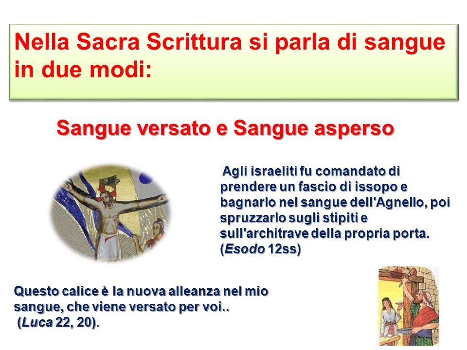 Nella Sacra Scrittura si parla di sangue in due modi: Sangue versato e Sangue asperso Questo calice è la nuova alleanza nel mio sangue, che viene versato per voi..