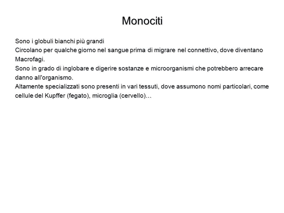 Monociti Sono i globuli bianchi più grandi Circolano per qualche giorno nel sangue prima di migrare nel connettivo, dove diventano Macrofagi. Sono in