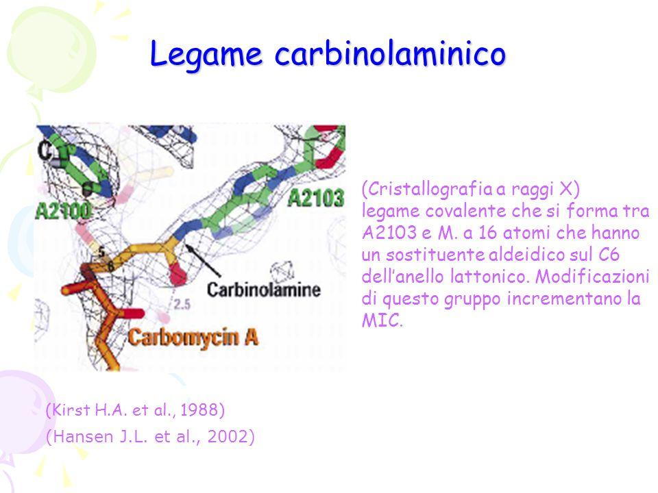 Legame carbinolaminico (Cristallografia a raggi X) legame covalente che si forma tra A2103 e M. a 16 atomi che hanno un sostituente aldeidico sul C6 d