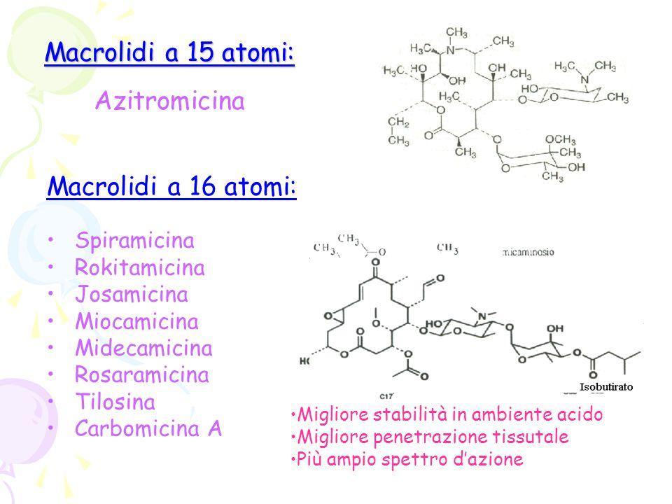 Macrolidi a 15 atomi: Macrolidi a 15 atomi: Azitromicina Macrolidi a 16 atomi: Spiramicina Rokitamicina Josamicina Miocamicina Midecamicina Rosaramici