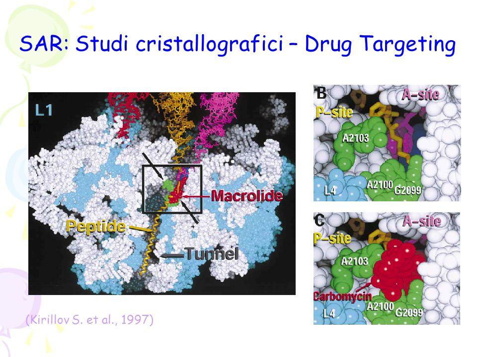 SAR: confronto dell'interazione di diversi macrolidi con il ribosoma (Hansen J.L.