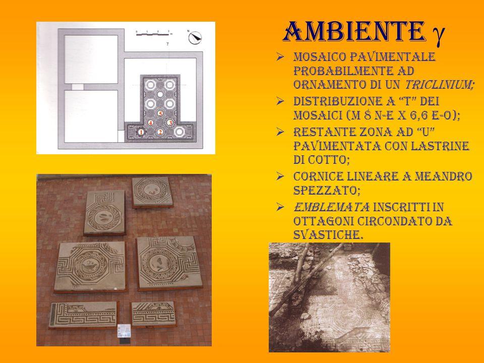 """Ambiente   Mosaico pavimentale probabilmente ad ornamento di un triclinium;  Distribuzione a """"T"""" dei mosaici (m 8 n-e x 6,6 e-o);  RESTANTE ZONA A"""