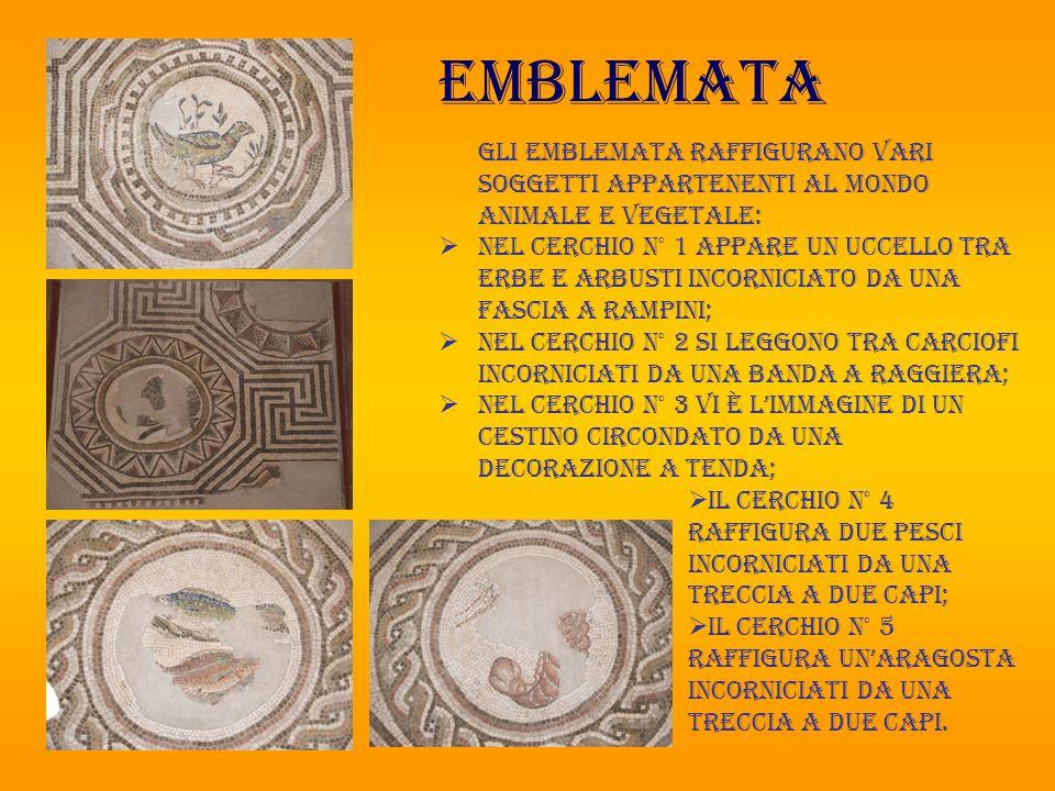 emblemata Gli emblemata raffigurano vari soggetti appartenenti al mondo animale e vegetale:  nel cerchio n° 1 appare un uccello tra erbe e arbusti in