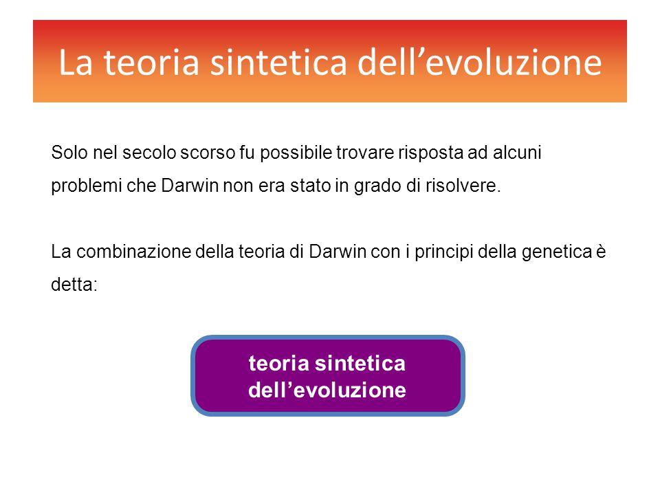 La teoria sintetica dell'evoluzione Solo nel secolo scorso fu possibile trovare risposta ad alcuni problemi che Darwin non era stato in grado di risol