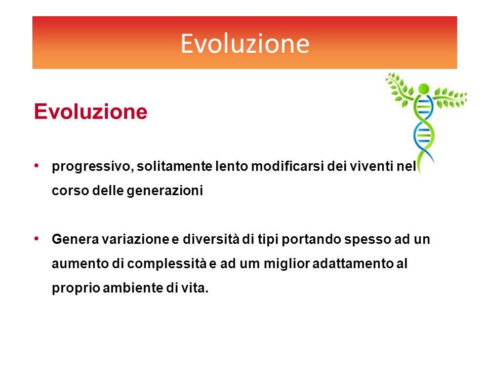 Evoluzione progressivo, solitamente lento modificarsi dei viventi nel corso delle generazioni Genera variazione e diversità di tipi portando spesso ad