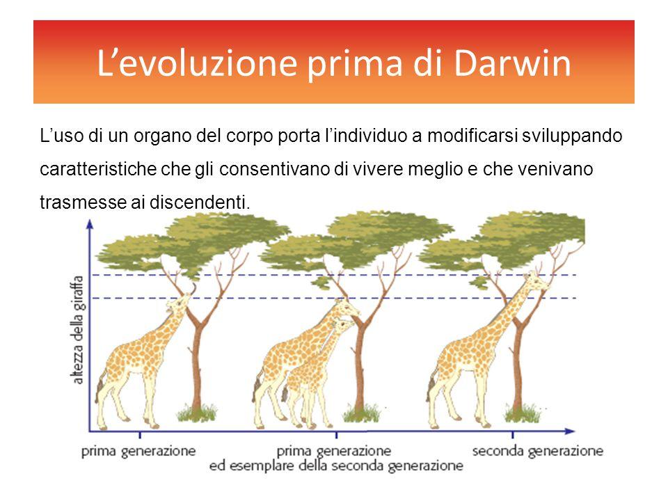L'evoluzione prima di Darwin L'uso di un organo del corpo porta l'individuo a modificarsi sviluppando caratteristiche che gli consentivano di vivere m