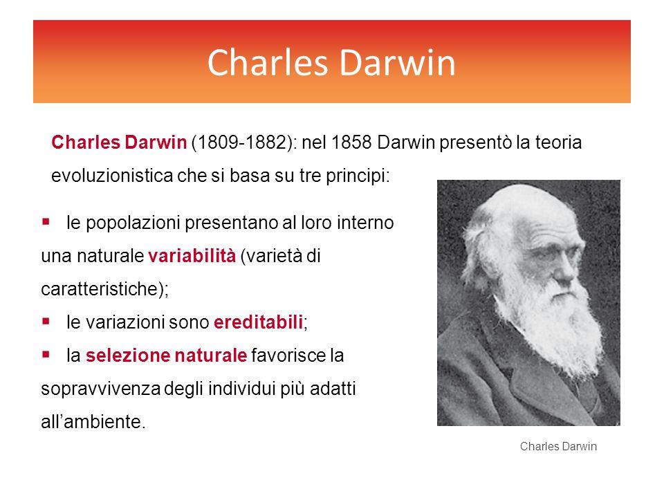 Charles Darwin  le popolazioni presentano al loro interno una naturale variabilità (varietà di caratteristiche);  le variazioni sono ereditabili; 