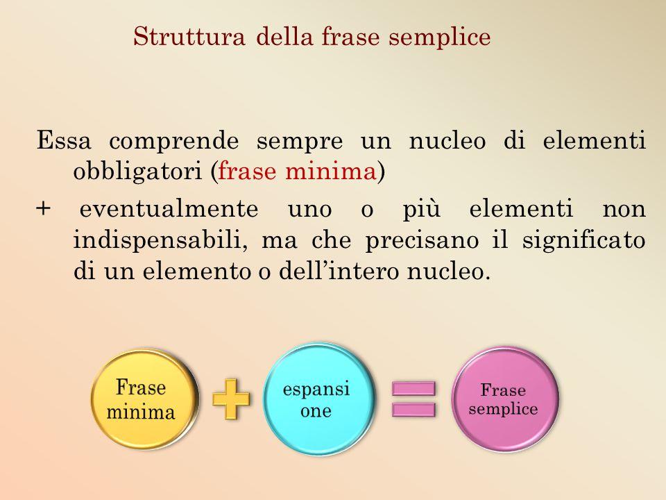 Struttura della frase semplice Essa comprende sempre un nucleo di elementi obbligatori (frase minima) + eventualmente uno o più elementi non indispens