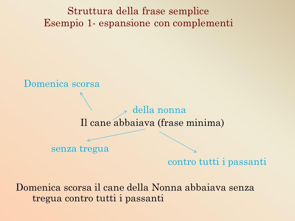 Struttura della frase semplice Esempio 1- espansione con complementi Domenica scorsa della nonna Il cane abbaiava (frase minima) senza tregua contro t