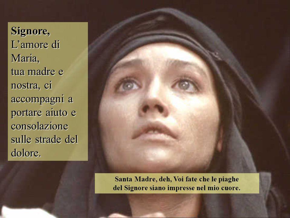 Signore, L'amore di Maria, tua madre e nostra, ci accompagni a portare aiuto e consolazione sulle strade del dolore. Santa Madre, deh, Voi fate che le