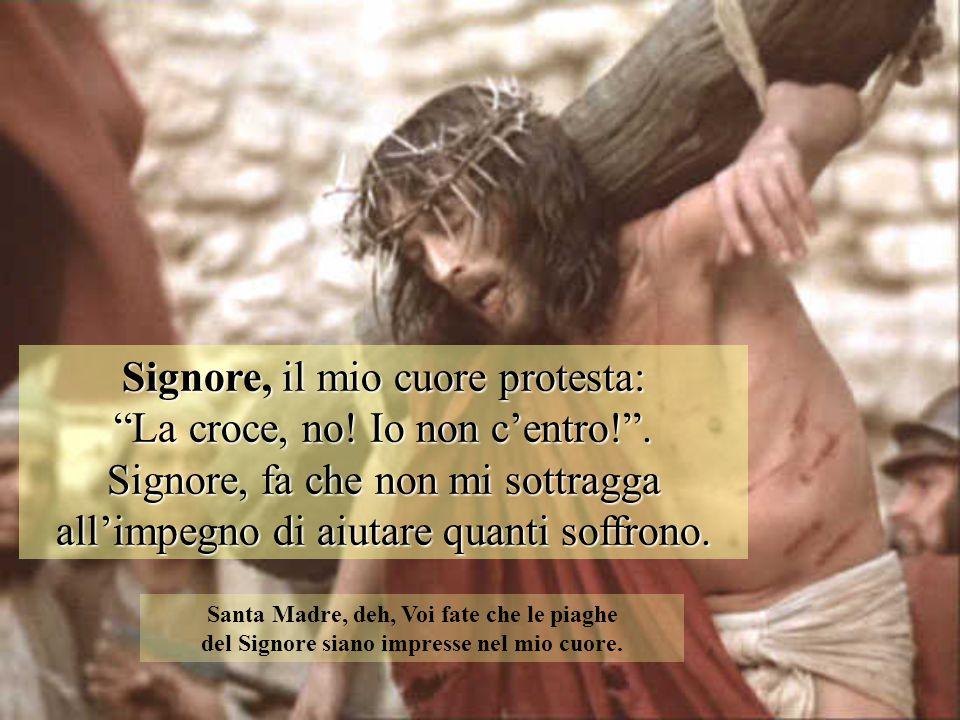 """Signore, il mio cuore protesta: """"La croce, no! Io non c'entro!"""". Signore, fa che non mi sottragga all'impegno di aiutare quanti soffrono. Santa Madre,"""
