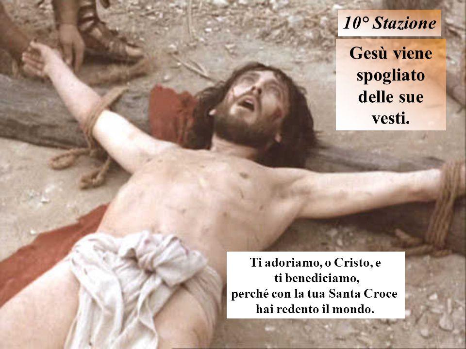 Gesù viene spogliato delle sue vesti. 10° Stazione Ti adoriamo, o Cristo, e ti benediciamo, perché con la tua Santa Croce hai redento il mondo.