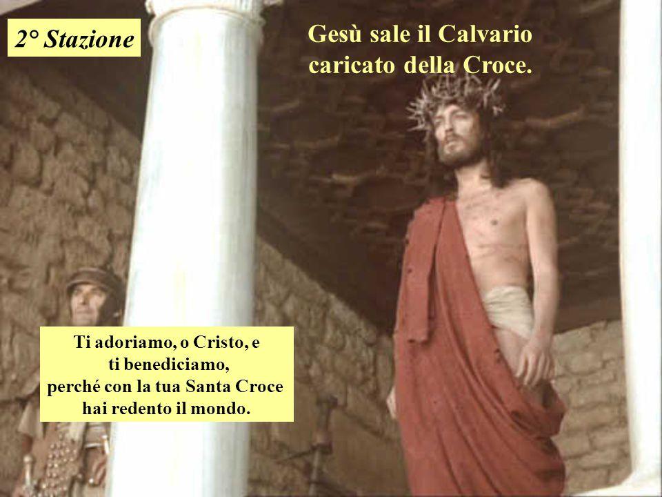 Gesù sale il Calvario caricato della Croce. 2° Stazione Ti adoriamo, o Cristo, e ti benediciamo, perché con la tua Santa Croce hai redento il mondo.