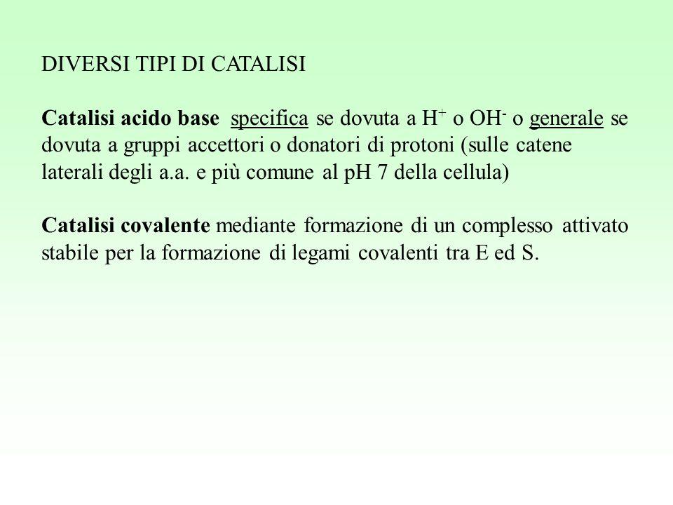 DIVERSI TIPI DI CATALISI Catalisi acido base specifica se dovuta a H + o OH - o generale se dovuta a gruppi accettori o donatori di protoni (sulle cat