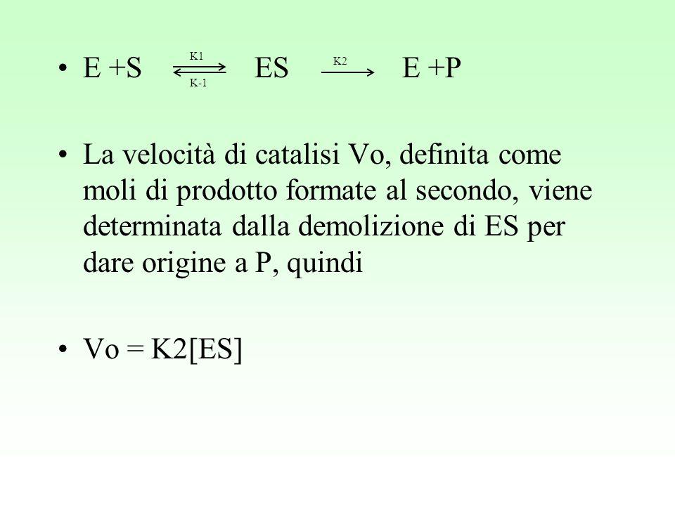 E +S ES E +P La velocità di catalisi Vo, definita come moli di prodotto formate al secondo, viene determinata dalla demolizione di ES per dare origine