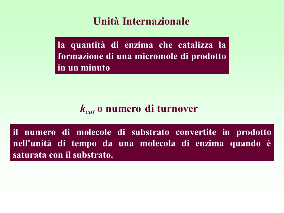 la quantità di enzima che catalizza la formazione di una micromole di prodotto in un minuto Unità Internazionale il numero di molecole di substrato co