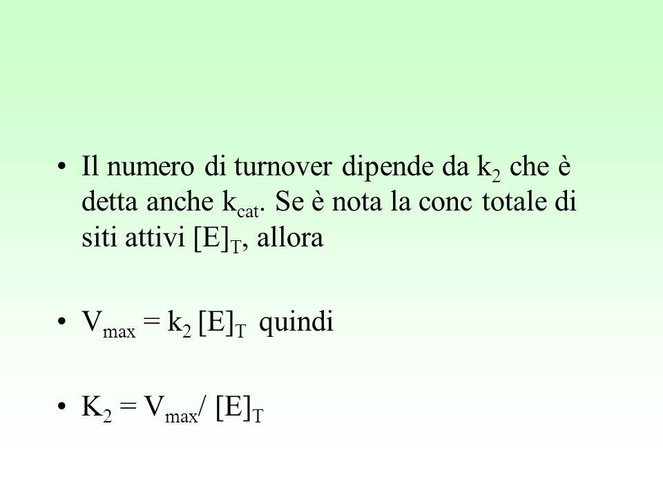 Il numero di turnover dipende da k 2 che è detta anche k cat. Se è nota la conc totale di siti attivi [E] T, allora V max = k 2 [E] T quindi K 2 = V m