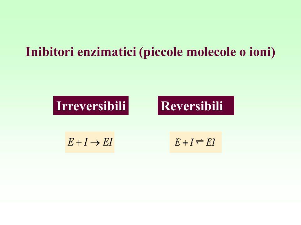 Inibitori enzimatici (piccole molecole o ioni) ReversibiliIrreversibili