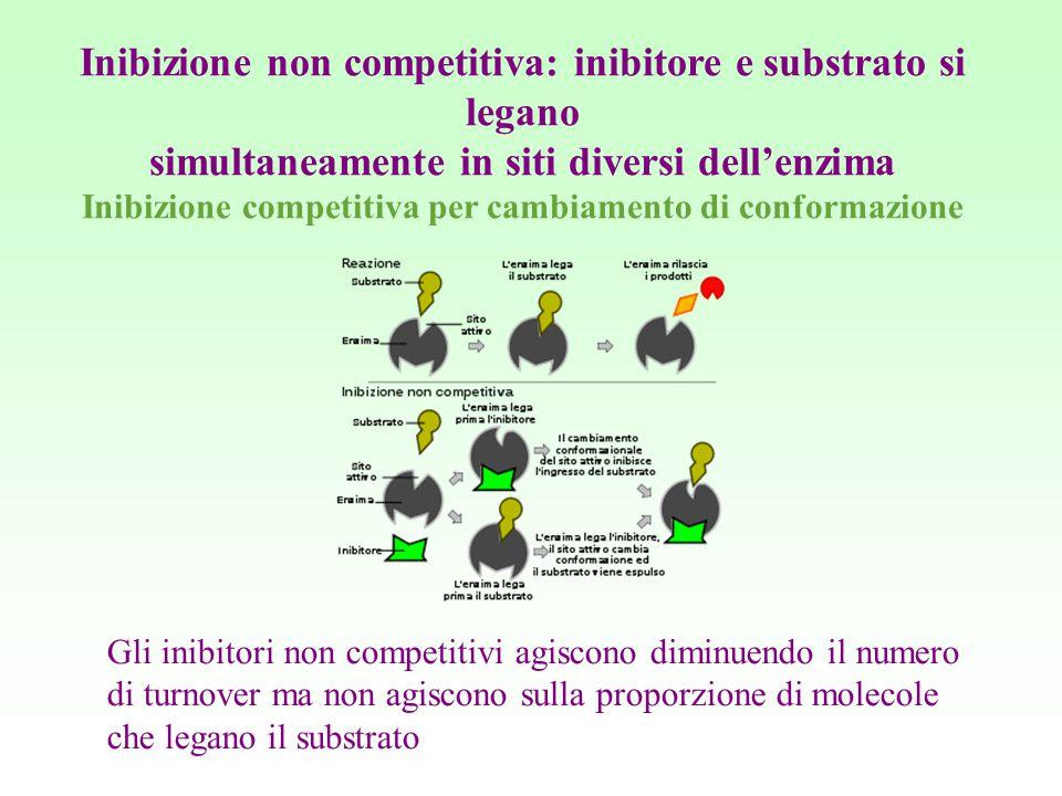 Inibizione non competitiva: inibitore e substrato si legano simultaneamente in siti diversi dell'enzima Inibizione competitiva per cambiamento di conf
