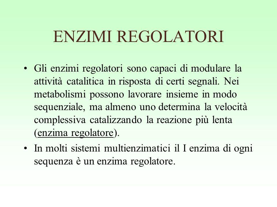 ENZIMI REGOLATORI Gli enzimi regolatori sono capaci di modulare la attività catalitica in risposta di certi segnali. Nei metabolismi possono lavorare