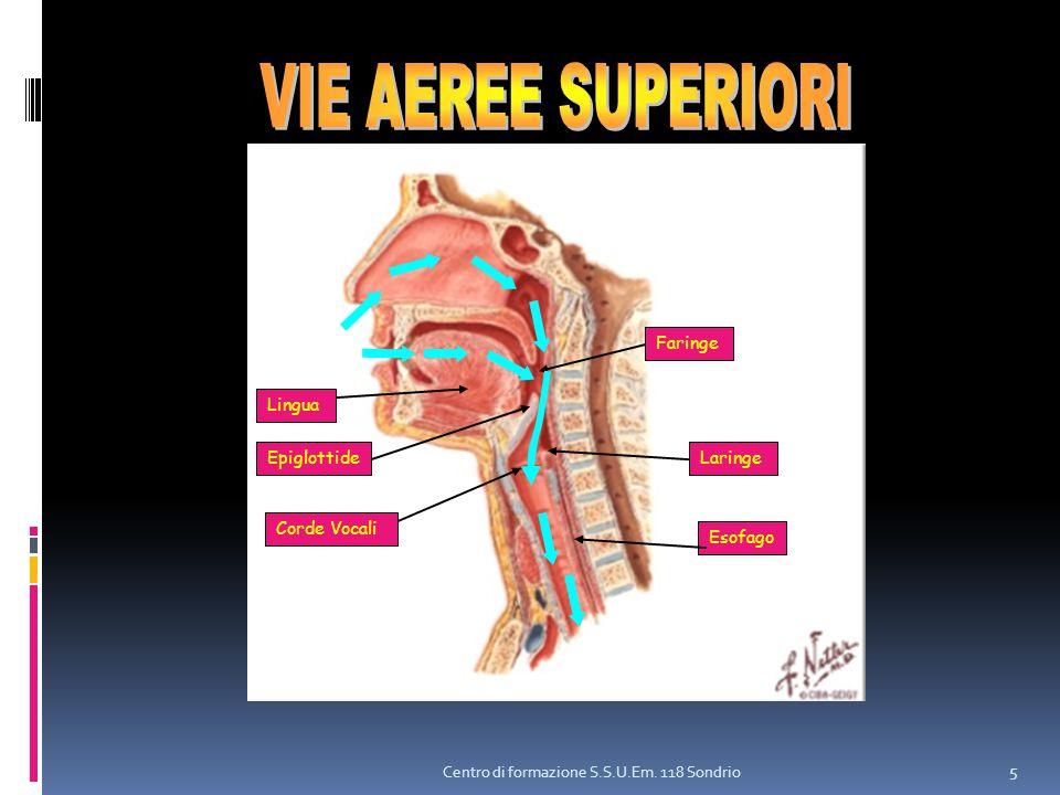 Centro di formazione S.S.U.Em. 118 Sondrio 5 Lingua Corde Vocali Esofago EpiglottideLaringe Faringe