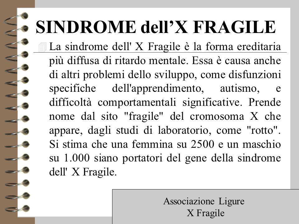 SINDROME dell'X FRAGILE 4 La sindrome dell X Fragile è la forma ereditaria più diffusa di ritardo mentale.