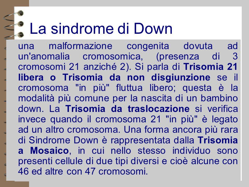 La sindrome di Down 4 una malformazione congenita dovuta ad un anomalia cromosomica, (presenza di 3 cromosomi 21 anziché 2).