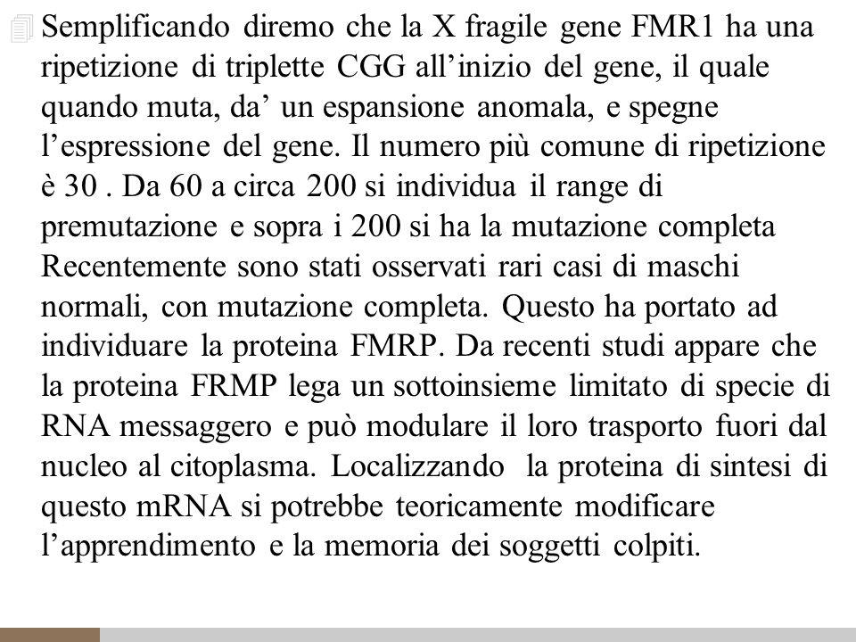 4 Semplificando diremo che la X fragile gene FMR1 ha una ripetizione di triplette CGG all'inizio del gene, il quale quando muta, da' un espansione anomala, e spegne l'espressione del gene.