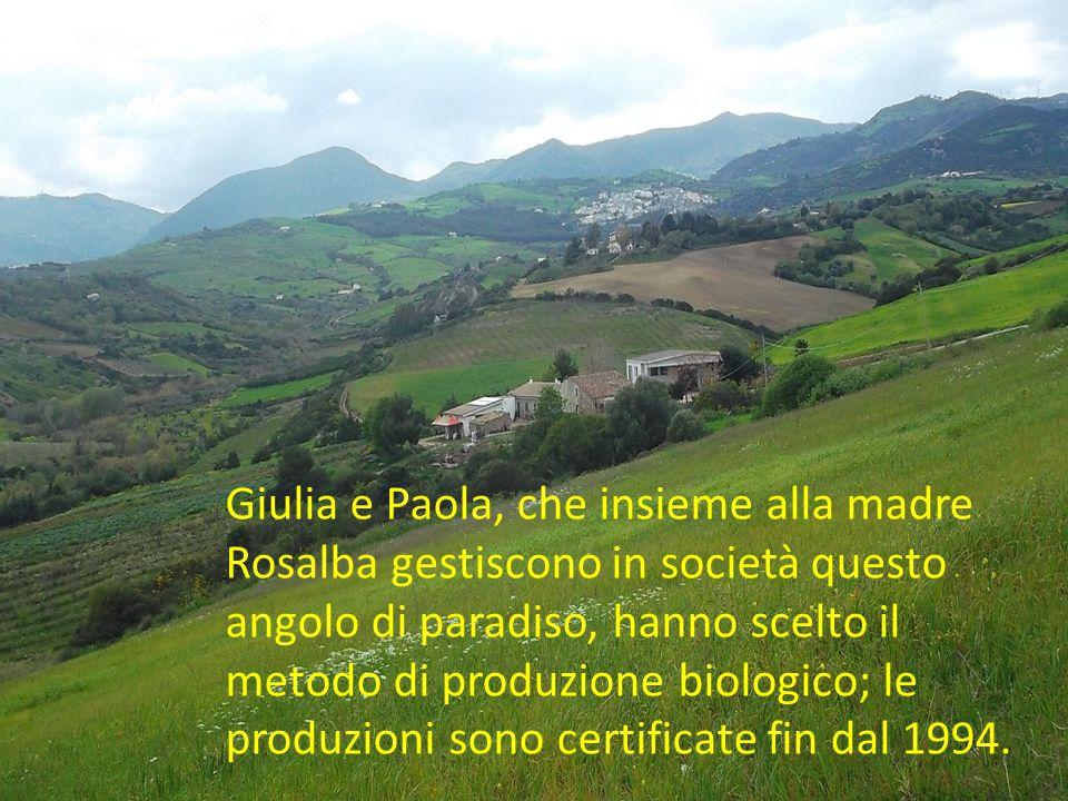 Giulia e Paola, che insieme alla madre Rosalba gestiscono in società questo angolo di paradiso, hanno scelto il metodo di produzione biologico; le pro