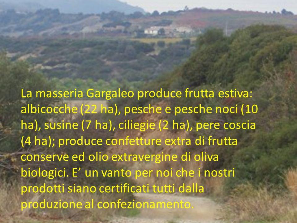 La masseria Gargaleo produce frutta estiva: albicocche (22 ha), pesche e pesche noci (10 ha), susine (7 ha), ciliegie (2 ha), pere coscia (4 ha); prod