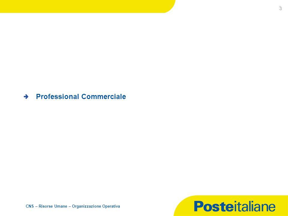 CNS – Risorse Umane – Organizzazione Operativa 3 Professional Commerciale