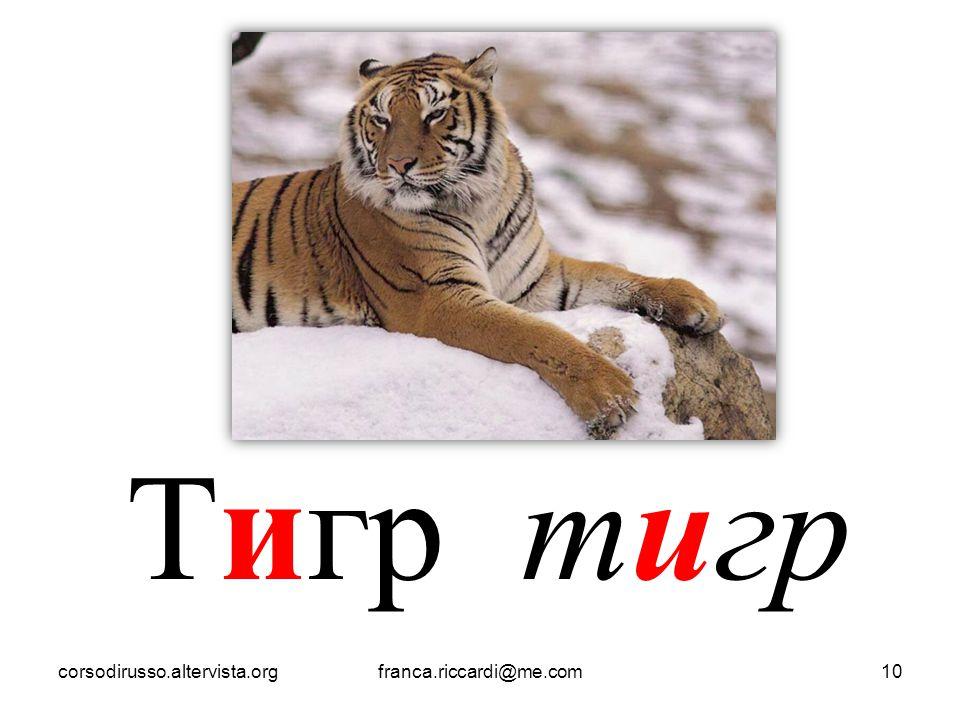 Тигр тигр corsodirusso.altervista.orgfranca.riccardi@me.com10