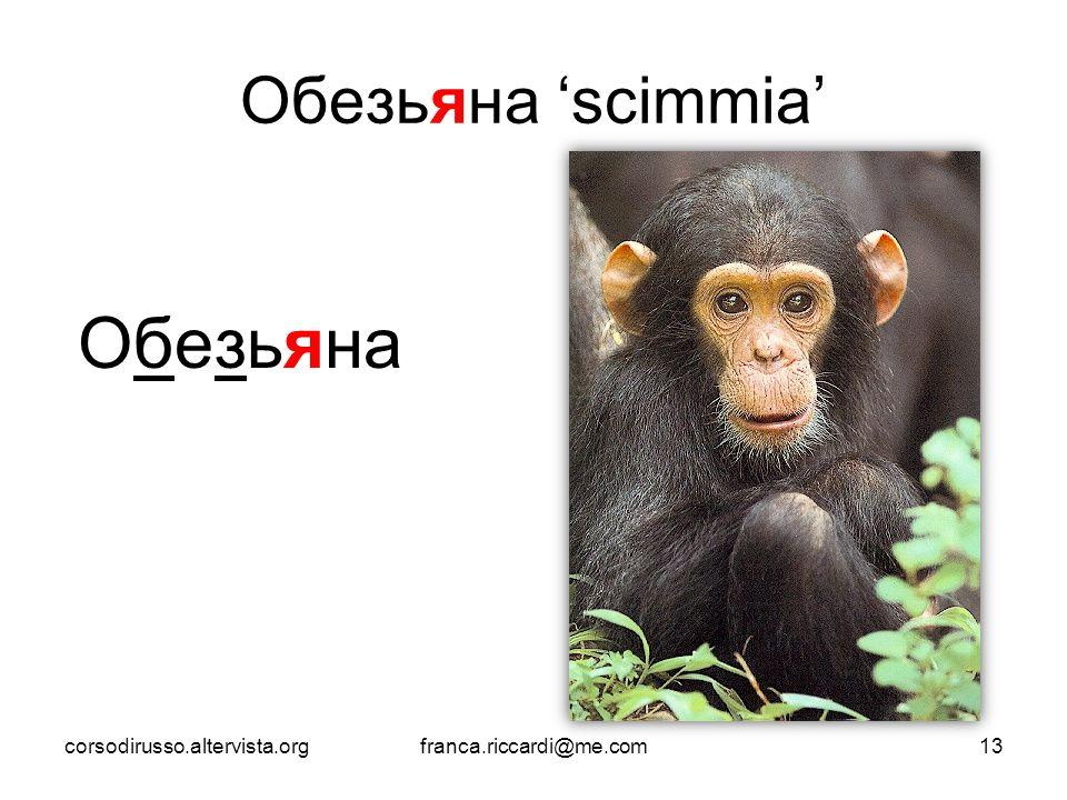 Обезьяна 'scimmia' Обезьяна corsodirusso.altervista.orgfranca.riccardi@me.com13