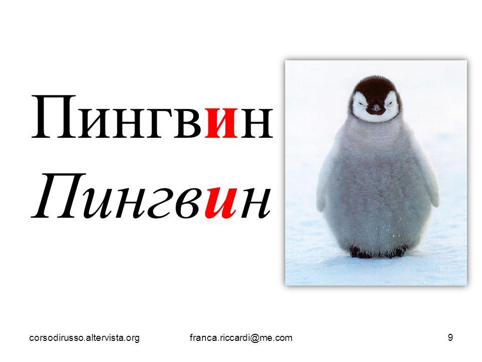Пингвин corsodirusso.altervista.orgfranca.riccardi@me.com9