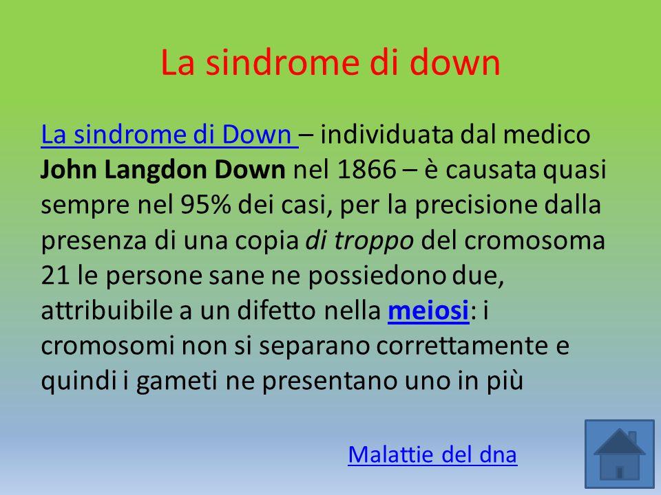 La sindrome di down La sindrome di Down La sindrome di Down – individuata dal medico John Langdon Down nel 1866 – è causata quasi sempre nel 95% dei c