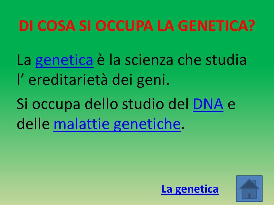 DI COSA SI OCCUPA LA GENETICA? La genetica è la scienza che studia l' ereditarietà dei geni.genetica Si occupa dello studio del DNA e delle malattie g