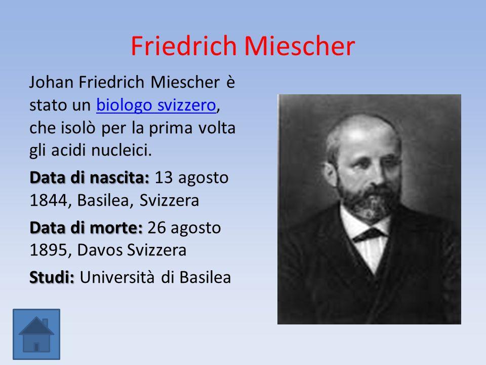 Friedrich Miescher Johan Friedrich Miescher è stato un biologo svizzero, che isolò per la prima volta gli acidi nucleici.biologo svizzero Data di nasc