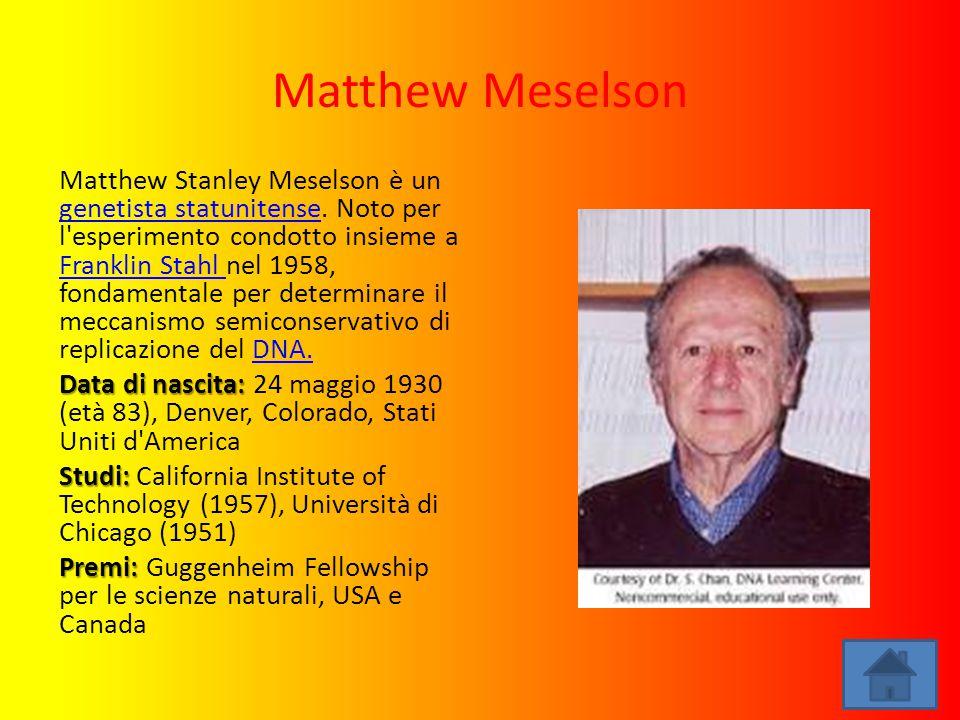 Matthew Meselson Matthew Stanley Meselson è un genetista statunitense. Noto per l'esperimento condotto insieme a Franklin Stahl nel 1958, fondamentale