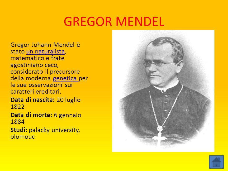 GREGOR MENDEL Gregor Johann Mendel è stato un naturalista, matematico e frate agostiniano ceco, considerato il precursore della moderna genetica per l