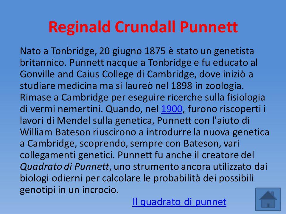 Reginald Crundall Punnett Nato a Tonbridge, 20 giugno 1875 è stato un genetista britannico. Punnett nacque a Tonbridge e fu educato al Gonville and Ca