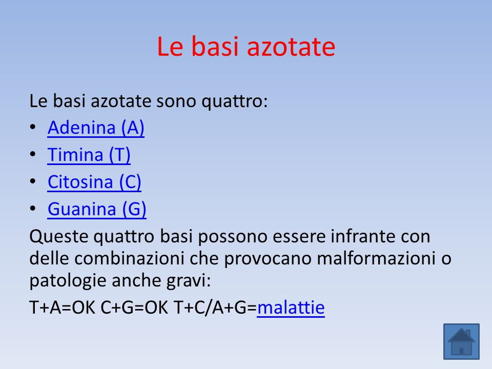 Le basi azotate Le basi azotate sono quattro: Adenina (A) Timina (T) Citosina (C) Guanina (G) Queste quattro basi possono essere infrante con delle co