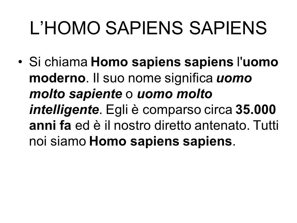 L'HOMO SAPIENS SAPIENS Si chiama Homo sapiens sapiens l'uomo moderno. Il suo nome significa uomo molto sapiente o uomo molto intelligente. Egli è comp