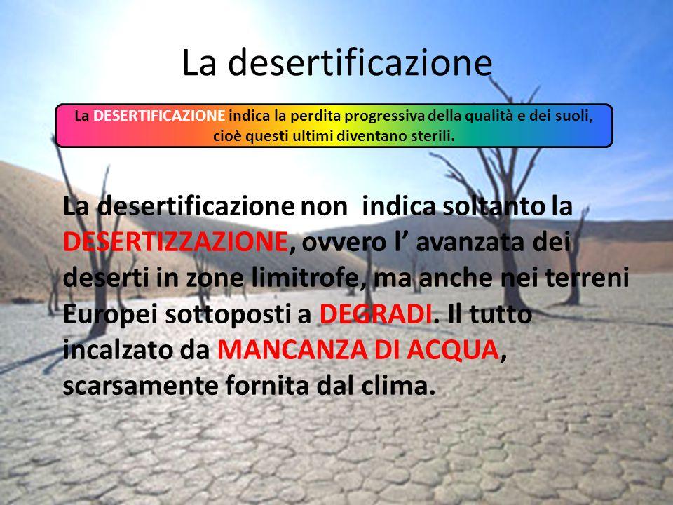 La desertificazione La DESERTIFICAZIONE indica la perdita progressiva della qualità e dei suoli, cioè questi ultimi diventano sterili. La desertificaz