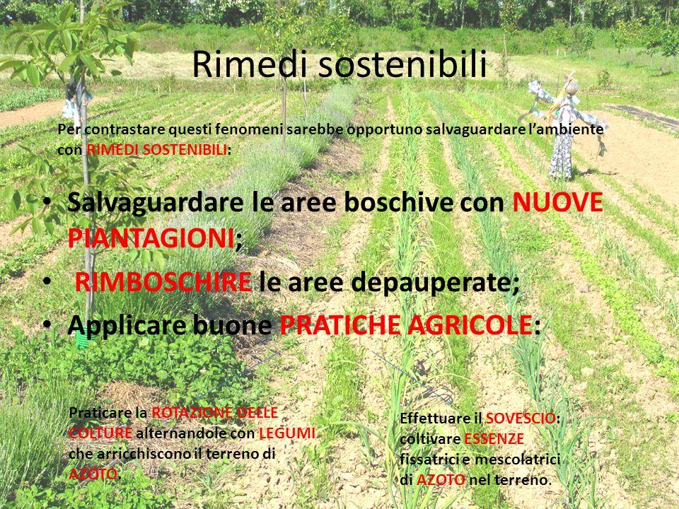 Rimedi sostenibili Salvaguardare le aree boschive con NUOVE PIANTAGIONI; RIMBOSCHIRE le aree depauperate; Applicare buone PRATICHE AGRICOLE: Per contr